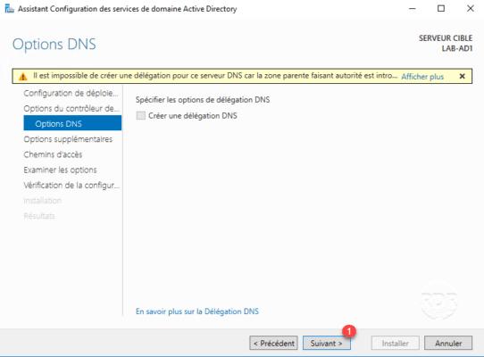 Option DNS