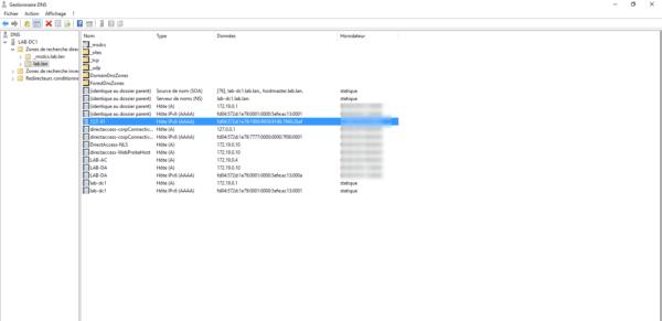 IPv6 record