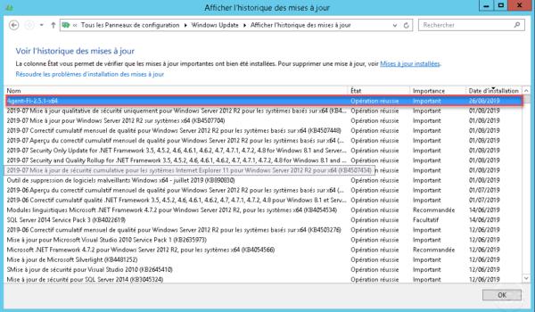 Client Windows Update