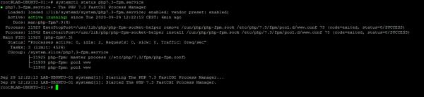 systemclt status php7.3-fpm
