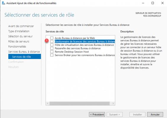 Select licenses server