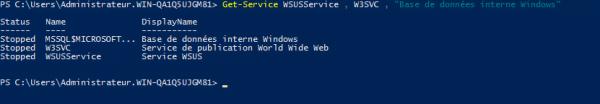 Check WSUS services