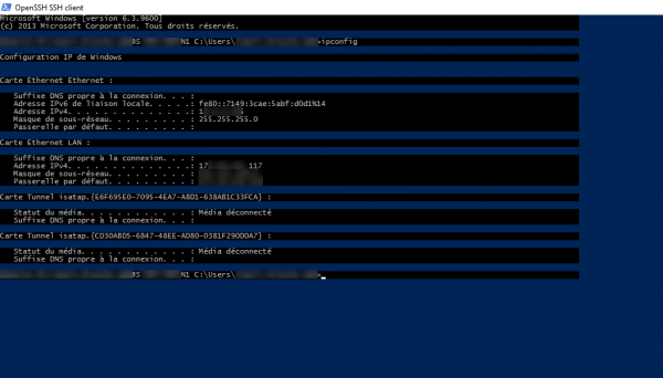 ipconfig on remote server
